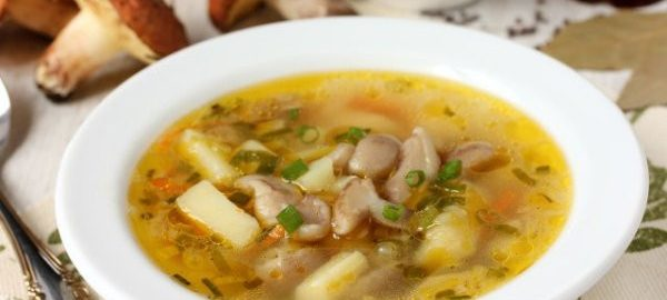 Суп с грибами маслятами