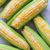 Как готовить и варить кукурузу